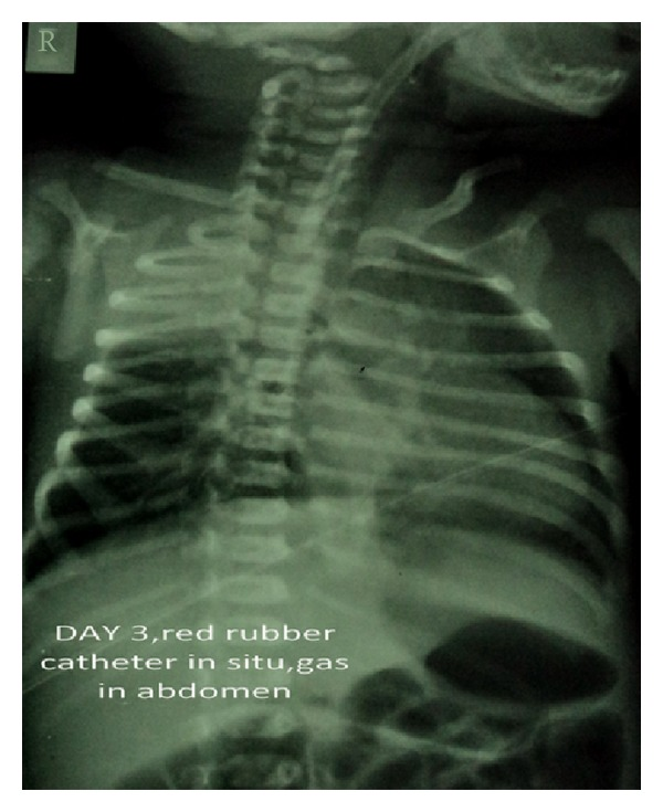 CRIM.PEDIATRICS2013-947401.001.jpg