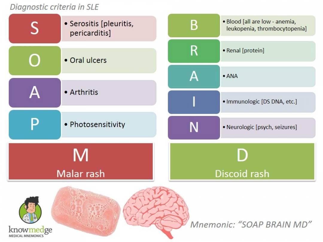 newSLE-Diagnosis-SOAP-BRAIN-MD.jpg