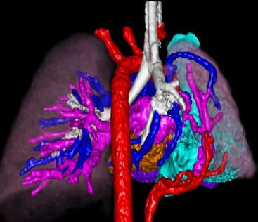 radiology+14.jpg