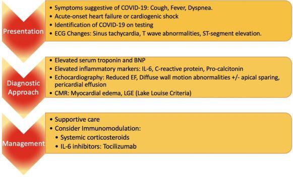newmyocarditis2.jpg