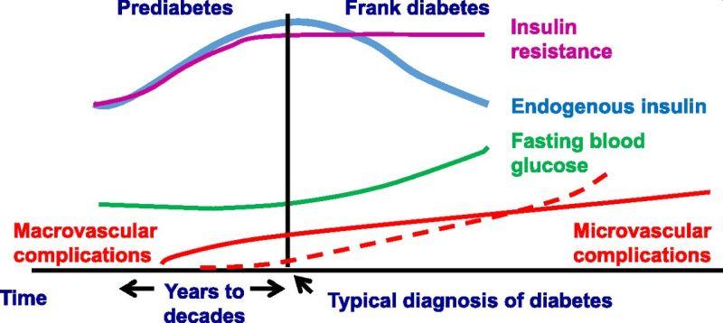 newdiabetes1.jpg