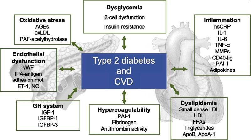 newdiabetes2.jpg