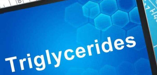 newtriglycerides.JPG
