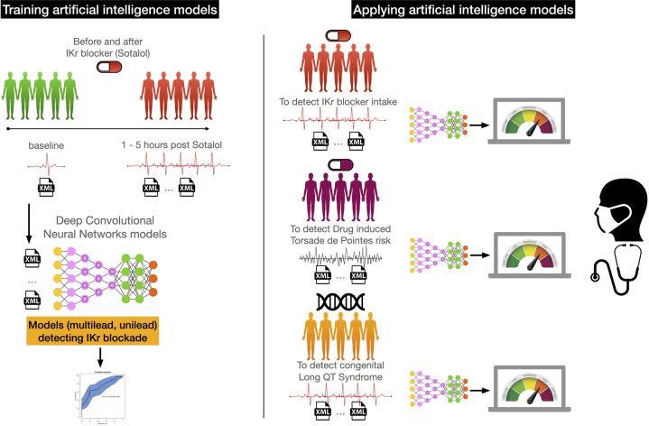 newintelligence.JPG