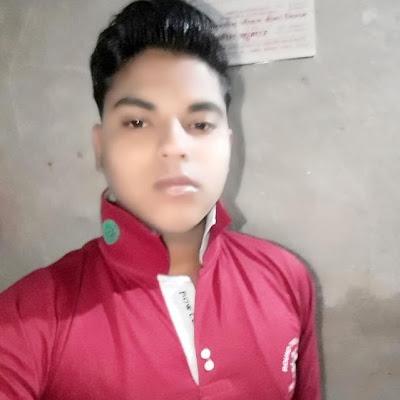 Raj Roushan*