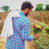 Anand Dangi